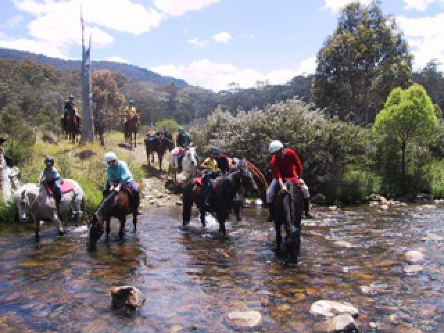 reynella men Man from snowy river country feel on top of the world – be on top of australia with the original and most experienced trail rides in the kosciuzsko national park.